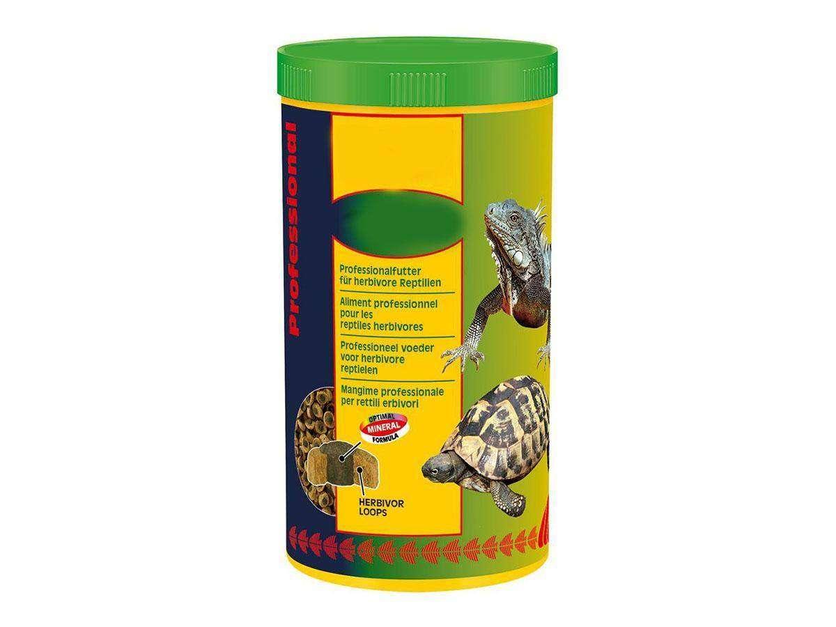 mangime tartarughe terrestri