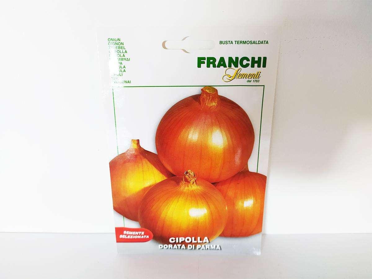 Seme di cipolla dorata di Parma - Franchi fronte