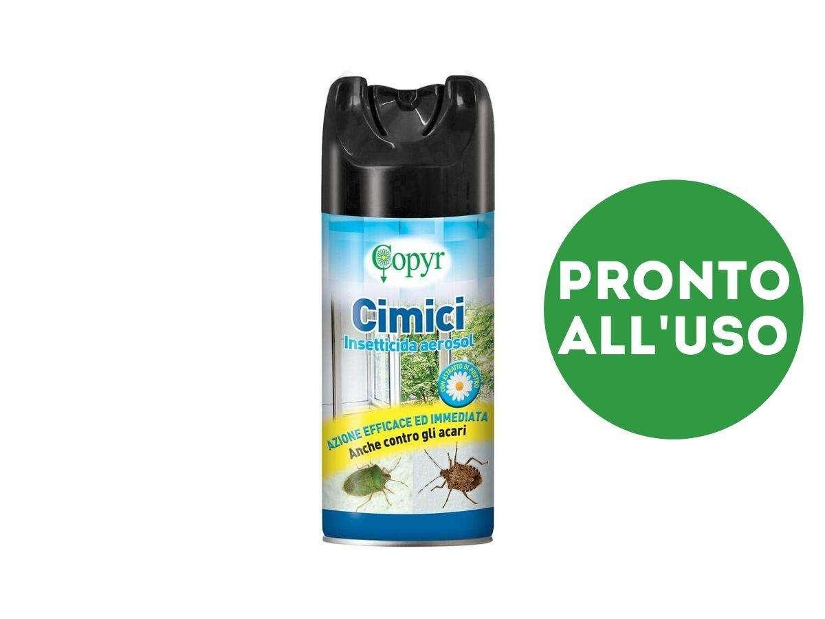 insetticida aerosol cimici - Copyr